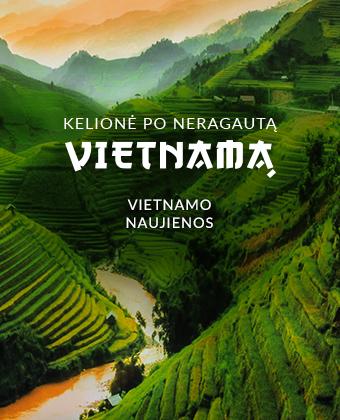 Vietnamo naujienos